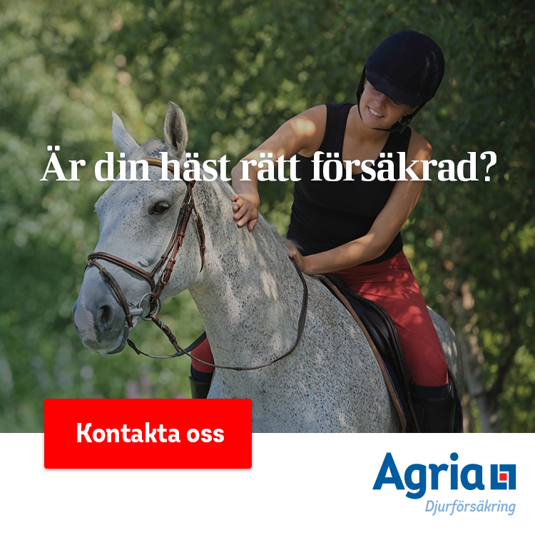 https://skaraortensrf.se/wp-content/uploads/2019/04/Banner_ridsportsförbundet.jpg